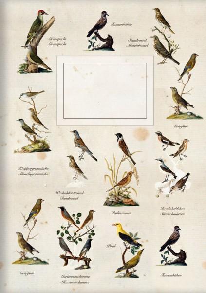 Kladden A6 'Gartenvögel 2'