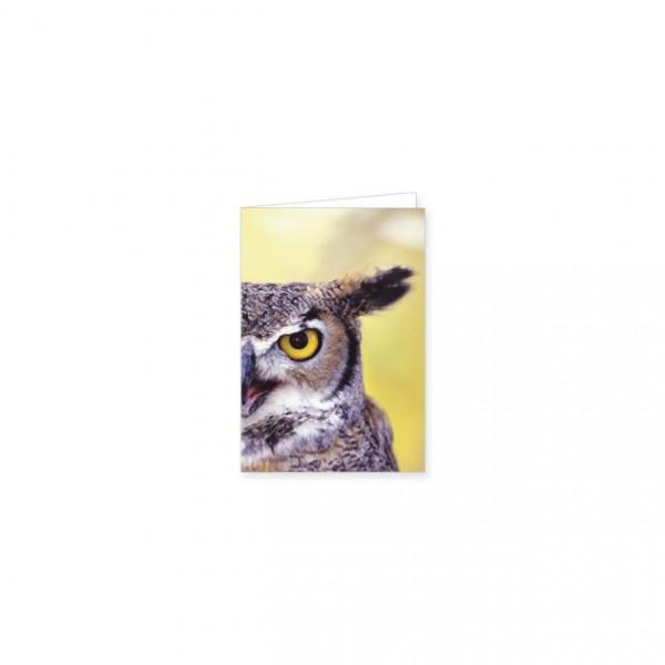 "Mini-Doppelkarte ""Virginia Uhu (Bubo virginianus)"""