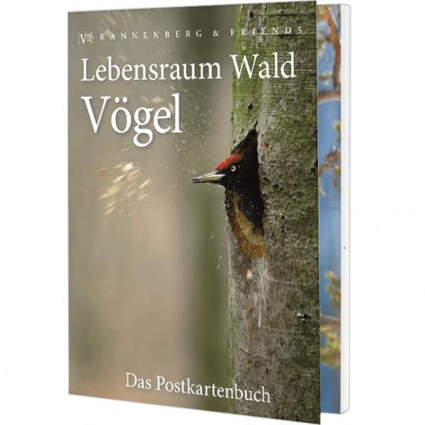 Postkartenbuch 'Lebensraum Wald: Vögel'