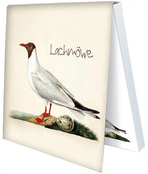 Klebezettel 'Lachmöwe'