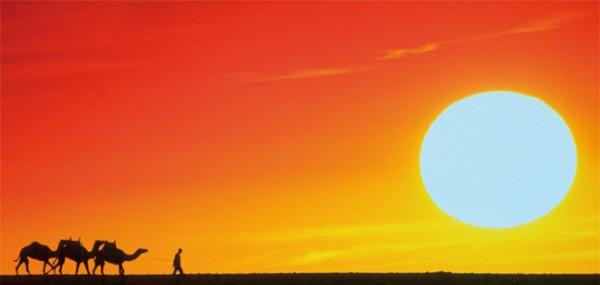 "XXL-Postkarte ""Karawane bei Sonnenuntergang"""