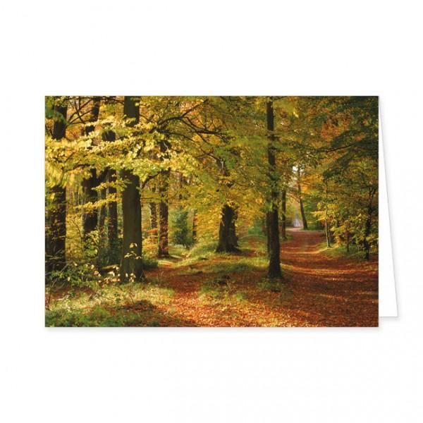 """Doppelkarte """"Herbstwald"""""""