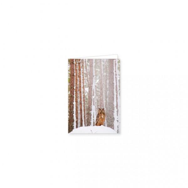 "Mini-Doppelkarte ""Uhu im schneeverhangenem Wald"""