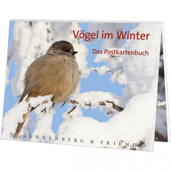 Postkartenbuch 'Vögel im Winter'
