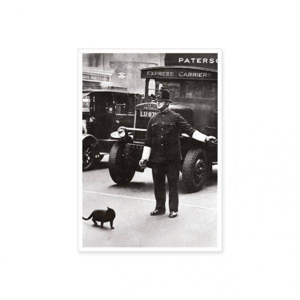 """Postkarte """"Katzenvorfahrt"""""""