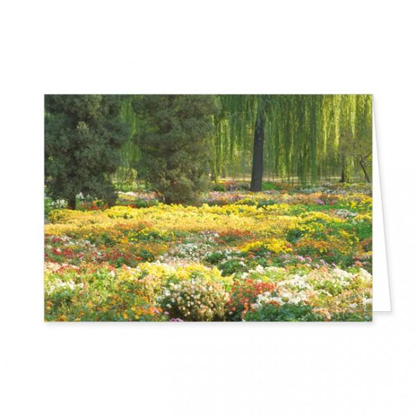 """Doppelkarte """"Buntes Blumenmeer"""""""