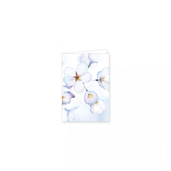 """Mini-Doppelkarte """"Japanische Kirschblüte"""""""
