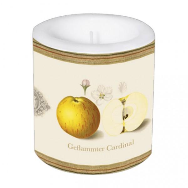 """Kleine Lampionkerze """"Pomologie der Äpfel"""""""