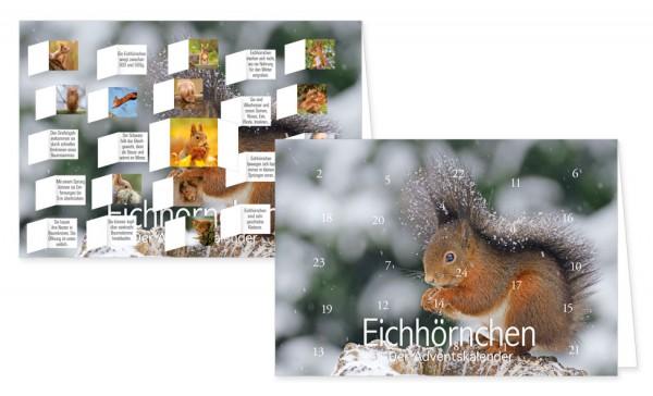 """""""Eichhörnchen"""""""