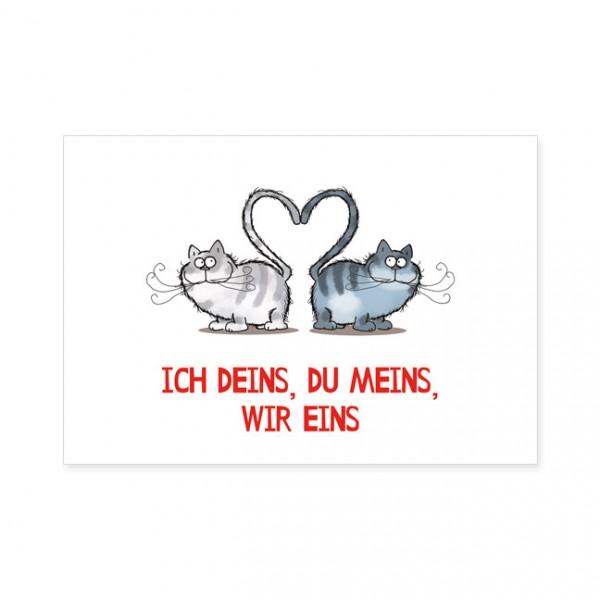 """Postkarten Large """"Catzz - Dein, mein, eins"""""""