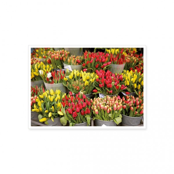 "Postkarte ""Tulpenmarkt"""