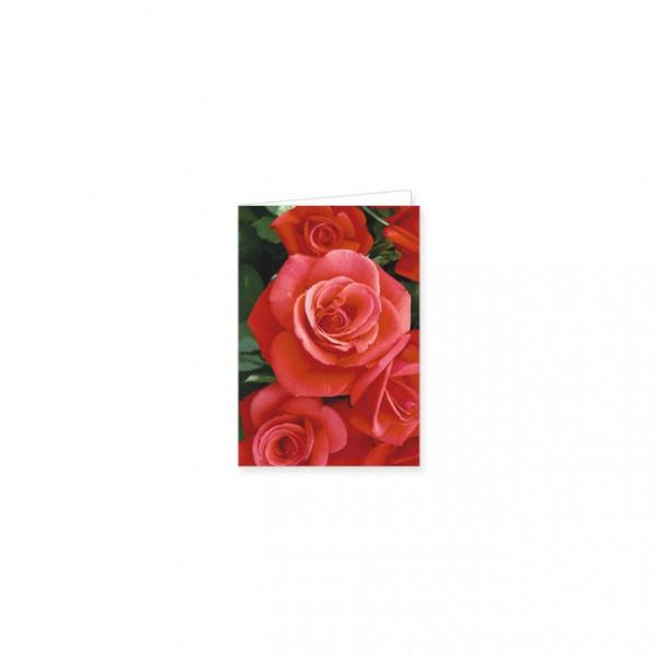 "Mini-Doppelkarte ""Rote Rosen"""