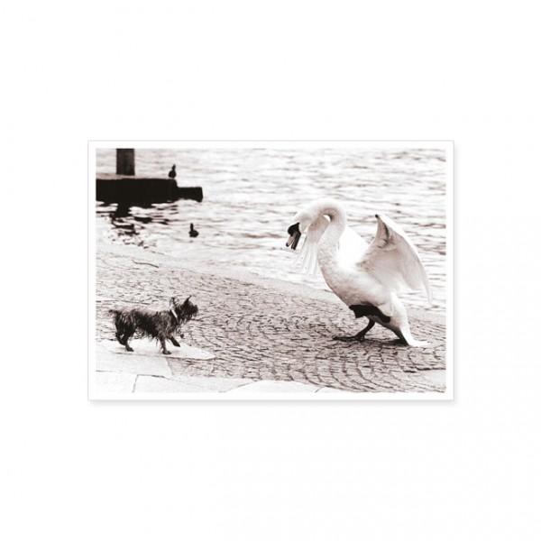 "Postkarte ""Begegnung"""