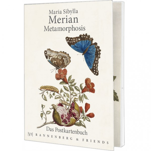 Postkartenbuch 'Maria Sibylla Merian – Metamorphosis'