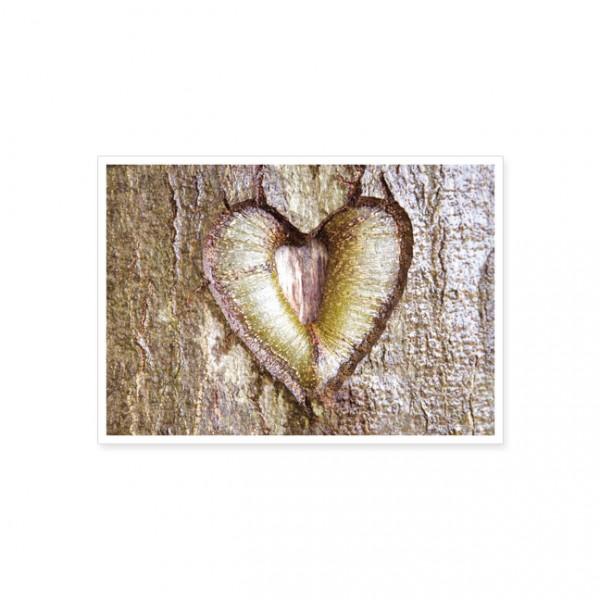 "Postkarte ""Herz im Baum"""