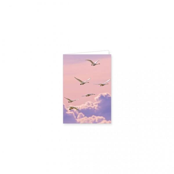 """Mini-Doppelkarte """"Fliegende Singschwäne"""""""
