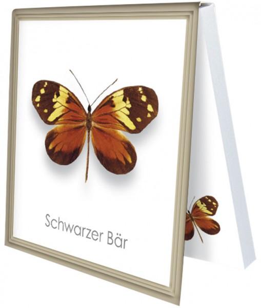 Klebezettel 'Schwarzer Bär'